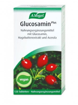 A.VOGEL GLUCOSAMINE PLUS 60CAPS