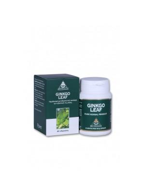 POWER HEALTH GINKGO LEAF 60 CAPS.